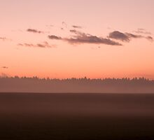 Misty fields at sunset by Ian Middleton