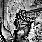 Stone Lion Gargoyle Bonython Hall Adelaide University by Nick Egglington