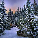 I Love Snow by Charles &amp; Patricia   Harkins ~ Picture Oregon
