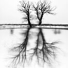 Shadow of my thoughts by ambiaso