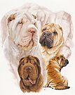 Shar Pei with Ghost by BarbBarcikKeith