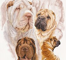 Shar Pei /Ghost by BarbBarcikKeith