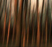 ''Faster Faster'' by Birgitta   †