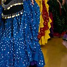 Belly Dance Skirts by Lita Medinger