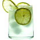 Gin and Tonic by Gert Lavsen