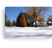 Autumn and Winter converge Canvas Print