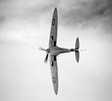 Spitfire display by Ian Merton