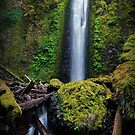 Gorton Creek Falls II by Tula Top