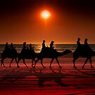 Shadow camels by Andrew Dickman