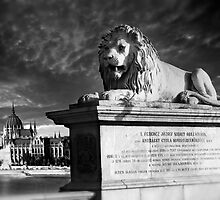 The Lion of The Chain Bridge - Budapest, Hungary by Paul Williams