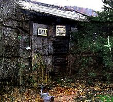 Old Shed & Grinder by teresa731