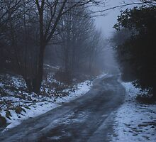 Foggy Lane by Ailia