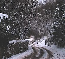 Snowy Lane by Ailia