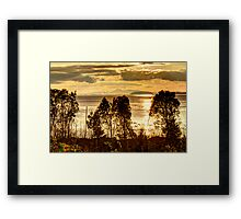 A Golden Multitude Framed Print