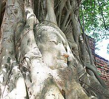 Buddha Head by BengLim