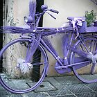 Lavender bicycle by Rob Chiarolli