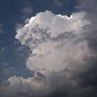 Clouds by saripin