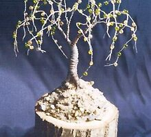 OAK ON OAK  - Beaded Wire Tree Sculpture, by Sal Villano  by Sal Villano