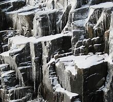 Ice on Canadian Shield Muskoka by Carolyn  Reinhart