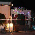 christmas lights by sharon wingard
