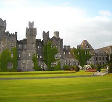 Ashford Castle, near Cong, Co. Galway by jeffwild