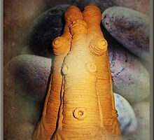 African Fertility Statue by Bine