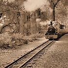 steam train sepia style by Sandy Maya Matzen