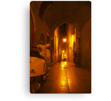 Sneaking Through The Alley  Canvas Print