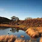Sychnant Pass, Conwy by RH-prints