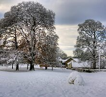 Dalmeny Green in White by Tom Gomez