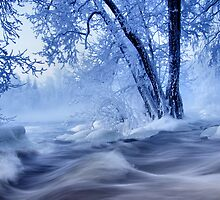 winter wonders by Kari Liimatainen