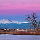 Longs Peak From St. Vrain State Park by Paul Gana