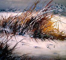 Fresh Snow... by © Janis Zroback