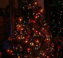 Card - Merry Christmas & Happy New Year by aussiebushstick