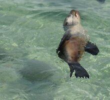 Water Dancing (189 views 6.4.13) by GemmaWiseman