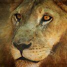 Leo by Kathryn Potempski