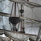 Unfurling on the Mast by Larry Lingard-Davis