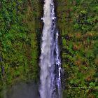 Akaka falls by PJS15204
