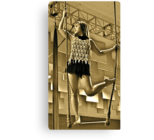Aerial Hoop and Trapeze Workshop Canvas Print