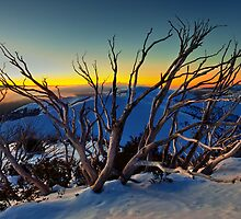 1635 Mt Hotham by hangingpixels