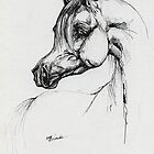 Arabian horse drawing by tarantella
