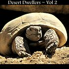 Desert Dwellers ~ Vol 2 by Kimberly P-Chadwick