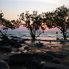 Mindil Beach Sunset - Darwin, Northern Territory by Ruth Durose
