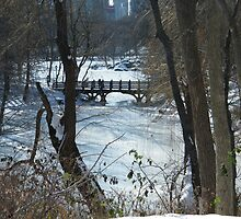 Bridge over Snow-Covered Lake, Central Park by lenspiro