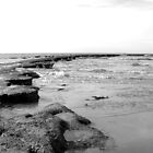 stepping out to sea by kchamula