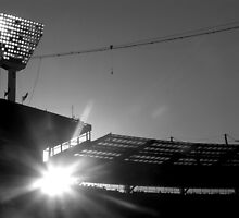 mcg lights by kchamula