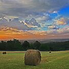 Green Forest Bales by JLBphoto