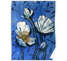White Poppies on Blue Poster
