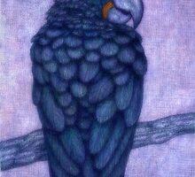 Blue parrot by Indigo46