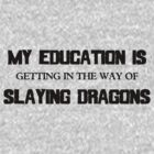 My Education Slaying Dragons by Evan Newman